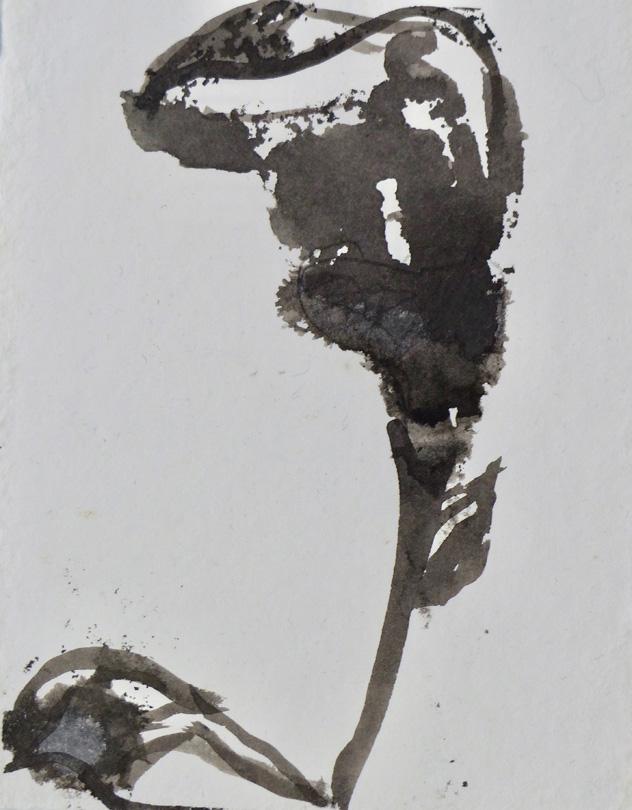 im garten 2015 tusche auf papier ca 20 x 15 cm